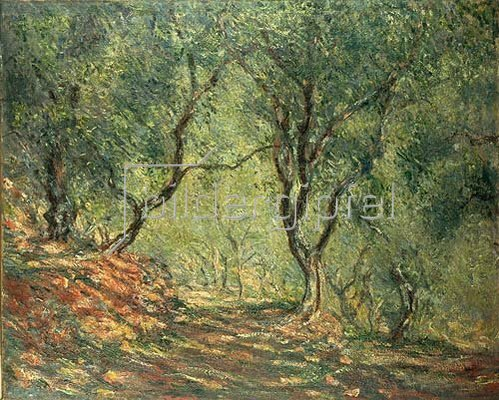 Claude Monet: Olivenhain im Garten Moreno. 1884