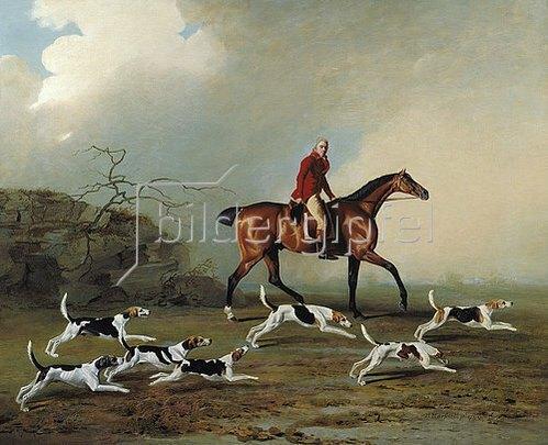 Benjamin Marshall: Captain W.H.Rickets bei der Fuchsjagd in Longwood.