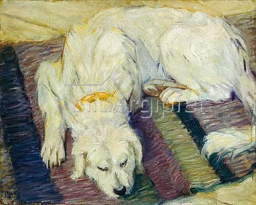 Franz Marc: Liegender Hund (Hundeportrait). 1909.