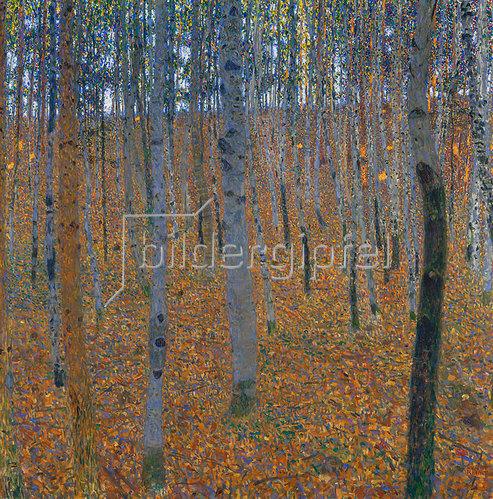 Gustav Klimt: Buchenwald