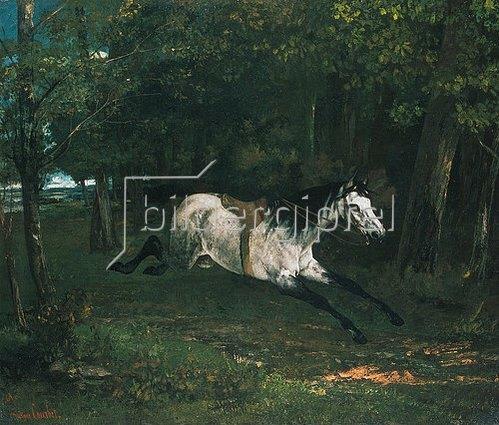 Gustave Courbet: Durchgehendes Pferd (Le piqueur ou le cheval dérobé). 1859/1861.
