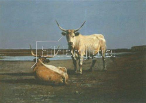 Alex von Wagner: Zwei Rinder in der Puszta. 1904