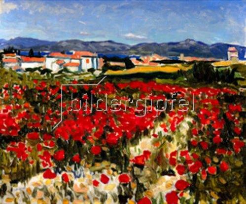 Albert Marquet: Mohnfeld in der Nähe von Saint Tropez    1905