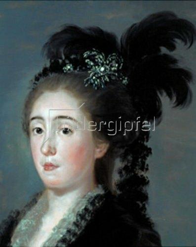 Francisco José de Goya: Dona Maria Teresa de Vallabriga - Detail 1783