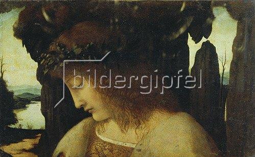 Giovanni Boltraffio: Narziss an der Quelle