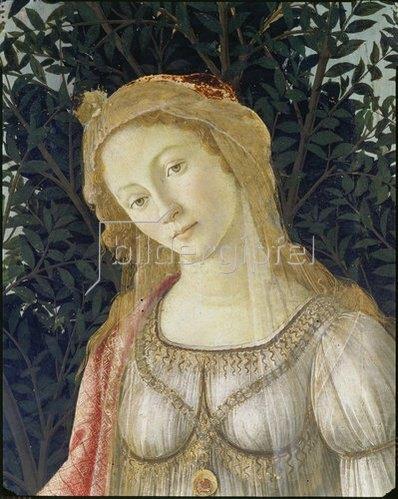 "Sandro Botticelli: Detail aus dem Gemälde ""Der Frühling"": Kopf der Venus."