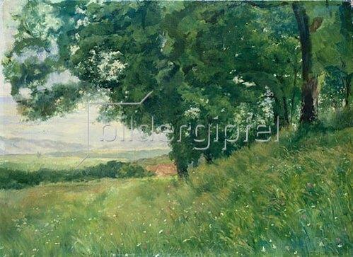 Louis Eysen: Sommerlandschaft. 1875/77