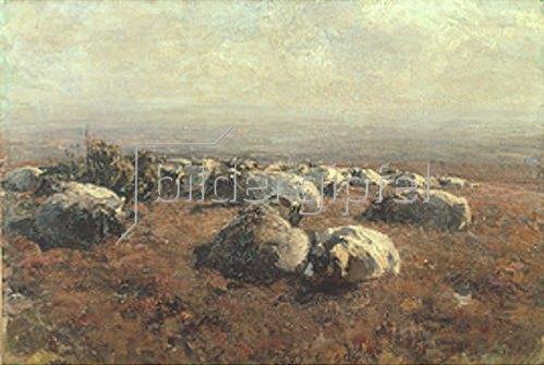 Heinrich von Zügel: Heidschnucken. 1904