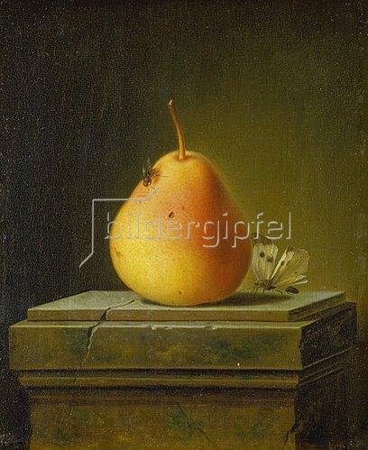 Justus Juncker: Stilleben mit Birne und Insekten. 1765.