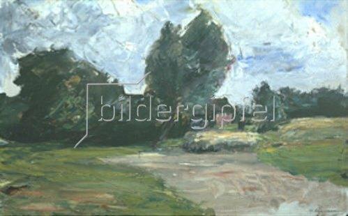 Max Liebermann: Holländische Landschaft.