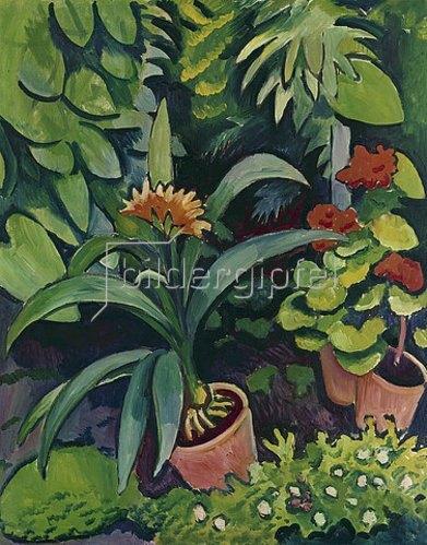 August Macke: Blumen im Garten: Clivia und Pelargonien. 1911