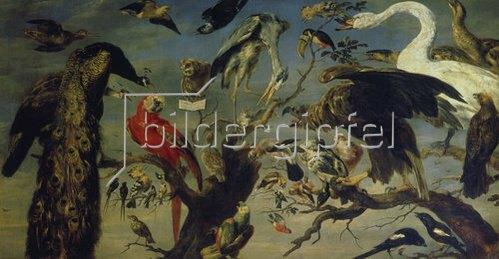 Frans Snyders: Das Vogelkonzert.