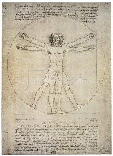 Leonardo da Vinci: Porportionszeichnung, nach Vitruv. 1490