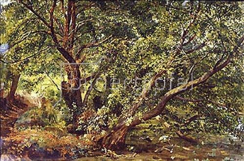 Alexander Iwanow: Bäume an einem Bach. 1837.