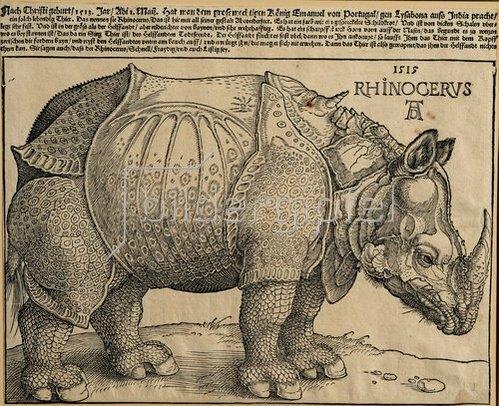 Albrecht Dürer: Nashorn. 1515. Für König Emanuel.