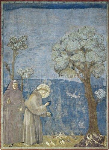 Giotto di Bondone: Der heilige Franziskus predigt den Vögeln. Um 1298-1300