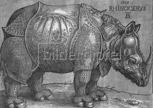 Albrecht Dürer: Rhinocerus. 1515