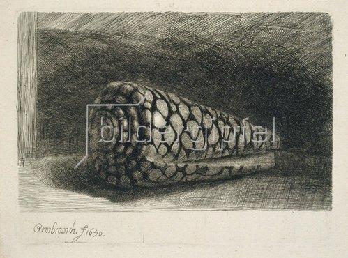Rembrandt van Rijn: Die Muschel. 1650