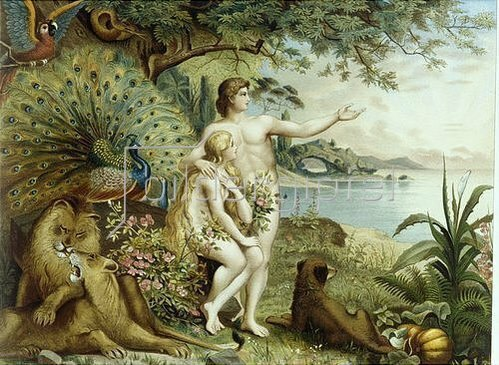 Johann Elias Ridinger: Adam und Eva im Paradies.
