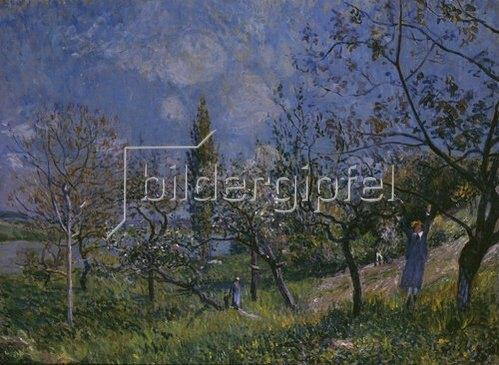 Alfred Sisley: Der Baumgarten. 1881.
