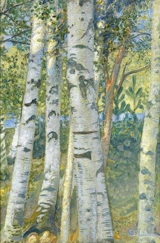 Carl Larsson: Birkenstämme. 1910