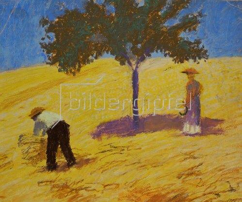 August Macke: Baum im Kornfeld. 1907
