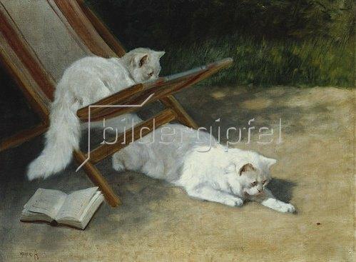 Arthur Heyer: Zwei weiße Perserkatzen beim Spiel mit einem Marienkäfer. 19. Jarhundert