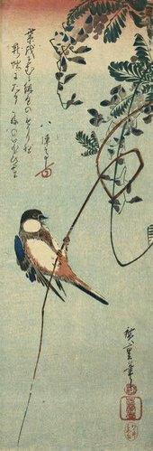 Ando Hiroshige: Schwalbe auf einem Ast einer Glyzinie sitzend.