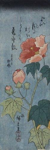 Ando Hiroshige: Blühender Mohn.