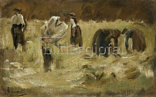 Max Liebermann: Getreideernte. 1874