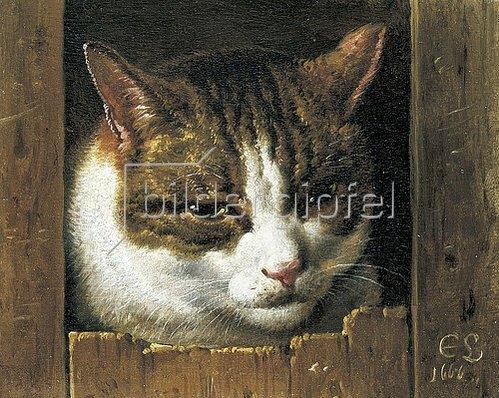 Cornelis Saftleven: Eine Katze guckt durch einen Zaun. 1666