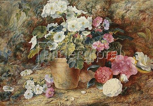 George Clare: Blumenstillleben mit Kamelien neben einem Topf mit  Pelargonien.