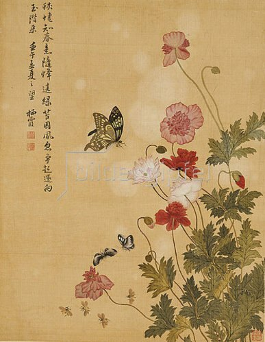 Ma Yuanyu: Mohnblumen und Schmetterlinge. 1702