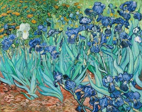 Vincent van Gogh: Iris. 1889