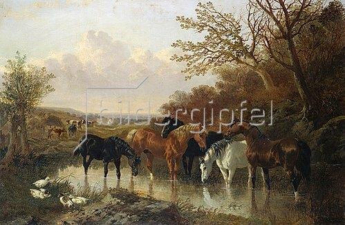John Frederick Herring d.J.: Pferde an einer Wasserstelle.