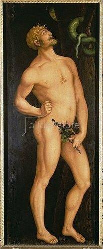 Hans Baldung (Grien): Adam. 1525 (siehe auch Bildnummer 3445)
