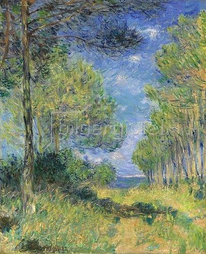 Claude Monet: Nadelbäume in Varengeville. 1882
