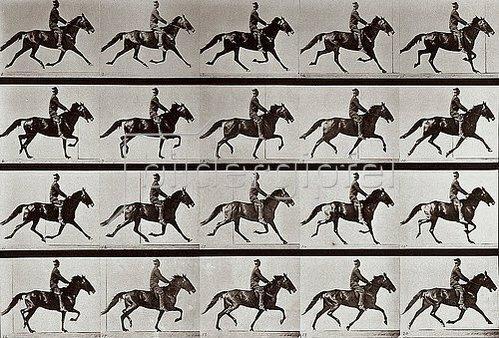 Eadweard Muybridge: Reitender Jockey (aus: Animal Locomotion, Tafel 591). 1887