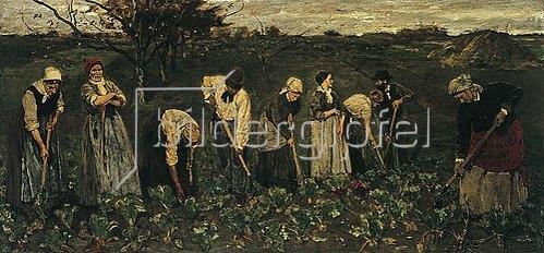 Max Liebermann: Arbeiter im Rübenfeld. 1874/75 begonnen in Barbizon, vollendet 1876