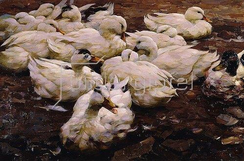 Alexander Koester: Enten auf einem Fluss.
