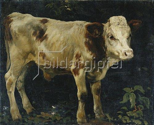 Christian Skredsvig: Ein Bullenkalb. 1876