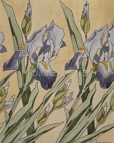 Koloman Moser: Iris. 1898