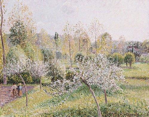 Camille Pissarro: Blühende Apfelbäume in Eragny. 1895