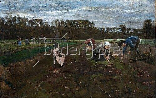 Max Liebermann: Kartoffelernte. 1875