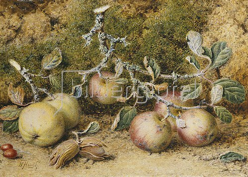 William Hough: Stillleben mit Äpfeln und Haselnüssen.