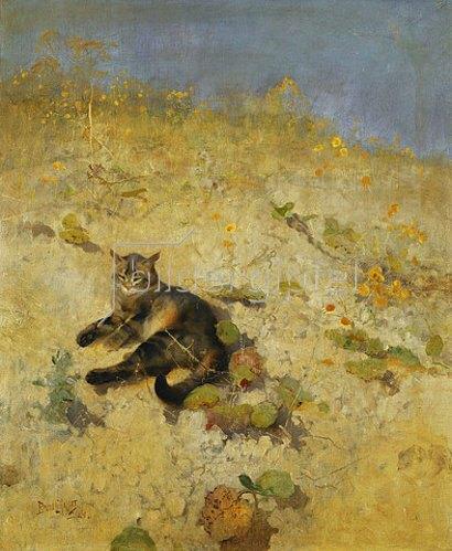 Bruno Andraes Liljefors: Eine sich sonnende Katze. 1884