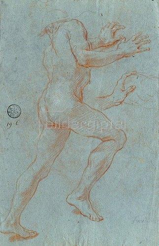 Giovanni Antonio Grecolini: Studie eines männlichen Aktes. Um 1716