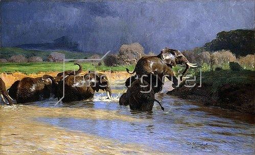 Wilhelm Kuhnert: Badende Elefanten. 1908
