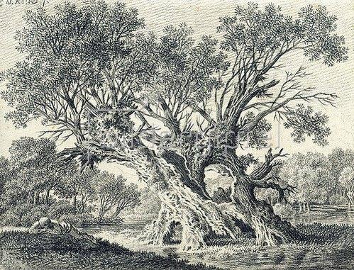 Carl Wilhelm der Ältere Kolbe: Weide und schlafender Knabe. Um 1798