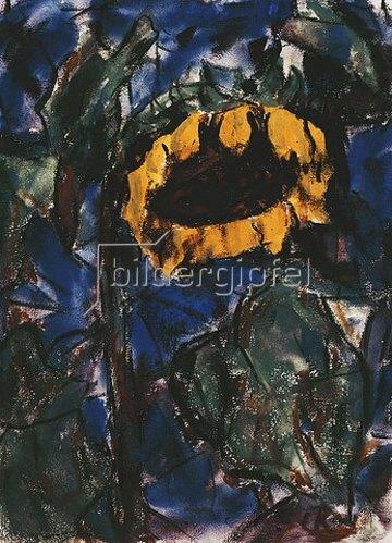 Christian Rohlfs: Sonnenblume.